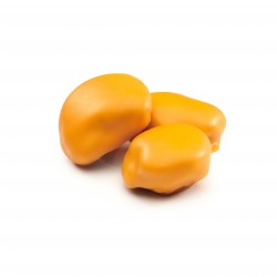 Pruneaux Enrobés de Chocolat A l'orange